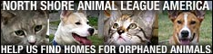 Help North Shore Animal League do good things for the animals!